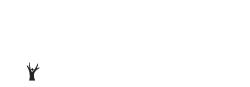 TruHealthSolutions Logo (Light)